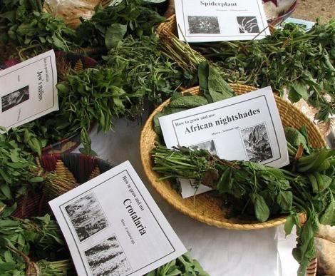 Traditional vegetables on display at Food Fair in Kenya.