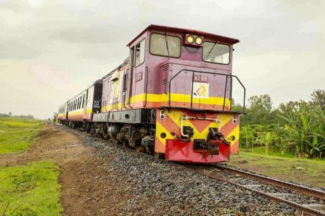 A train on the Nakuru-Kisumu Railway line.