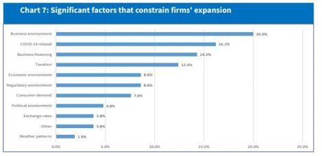 A chart from the Central Bank report showing significant factors that constrain firms' expansion.