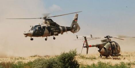 Kenya Airforce choppers in action.