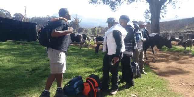 Hiking - Trekking and hiking Elephant Hill