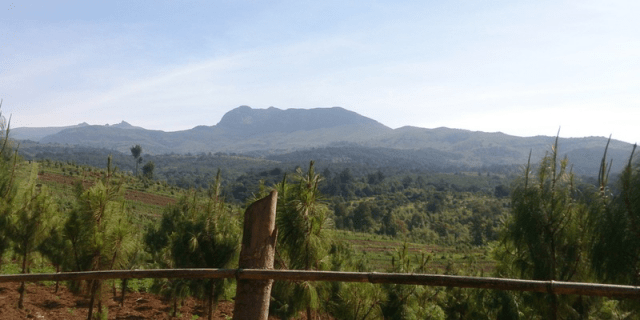 Hiking - Trekking and hiking Elephant Hill