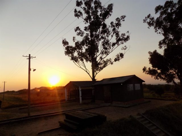 TAZARA Trains - Sunset