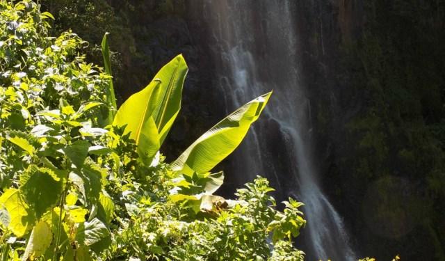Best Travel Photos of 2017 - Zaina Falls in Nyeri Kenya