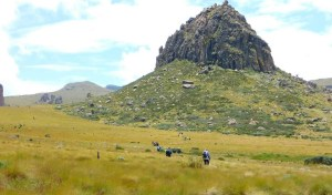 Hiking Mount Satima in the Aberdares Forest