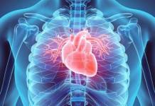 Kenyan-Collective-Regular-Medical-Checkups-Important-Step-Tackling-Cardiovascular-Diseases-Kenya