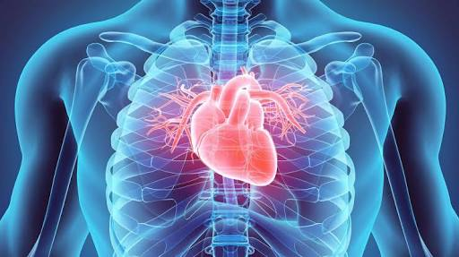 Kenyan-Collective-Regular-Medical-Checkups-Important-Step-Tackling-Cardiovascular-Diseases-Kenya