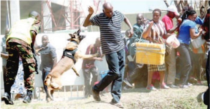 Police dogs were used to control an impatient crowd at Nyayo Stadium on Tuesday, February 11, during the funeral service of Daniel arap Moi, Kenya's 2nd President