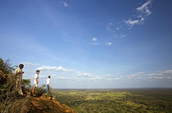 Open plains of the Meru National Park.