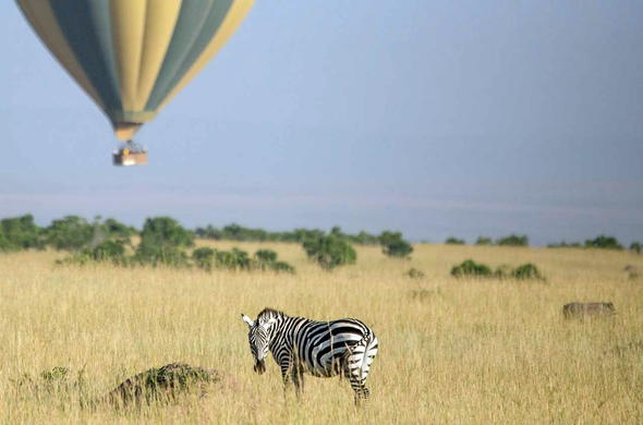 Masai Mara hot air balloon safari.