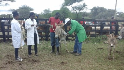 World Veterinary Day_2017 (70)