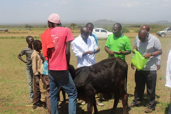 Launch of Livestock Identification and Traceability System in Laikipia County