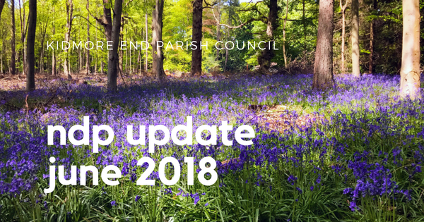 kidmore end parish council-12