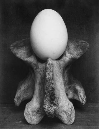 Weston, Egg