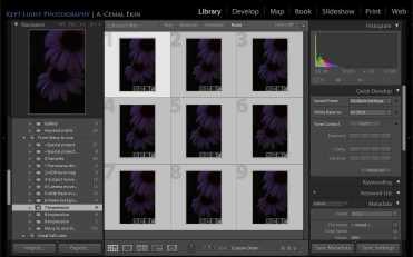 Select images in Lightroom