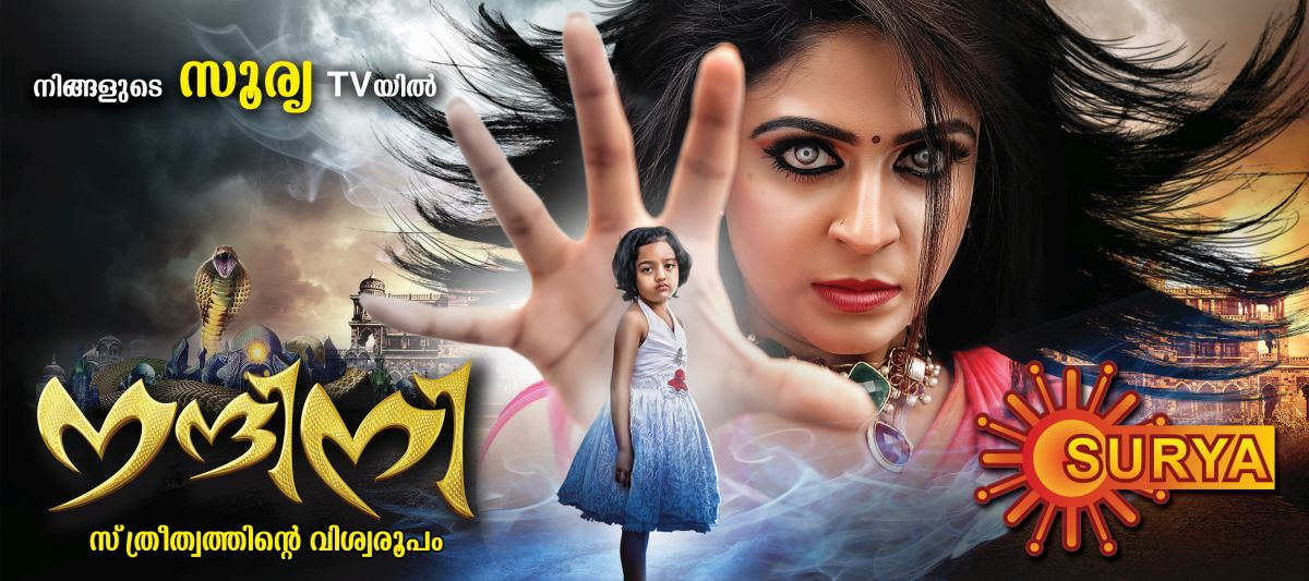 nandini surya tv serial story, cast and crew list - starting on 23rd january 2017