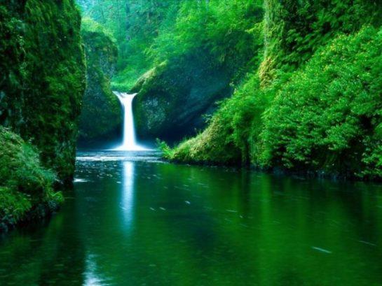 Harika Doğa Resimleri (26 Resim)