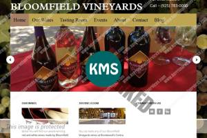 BloomfieldVineyards.com screenshot