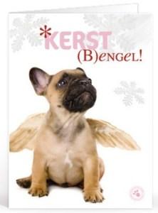 Kerst teksten bezinning voor op een kaartje