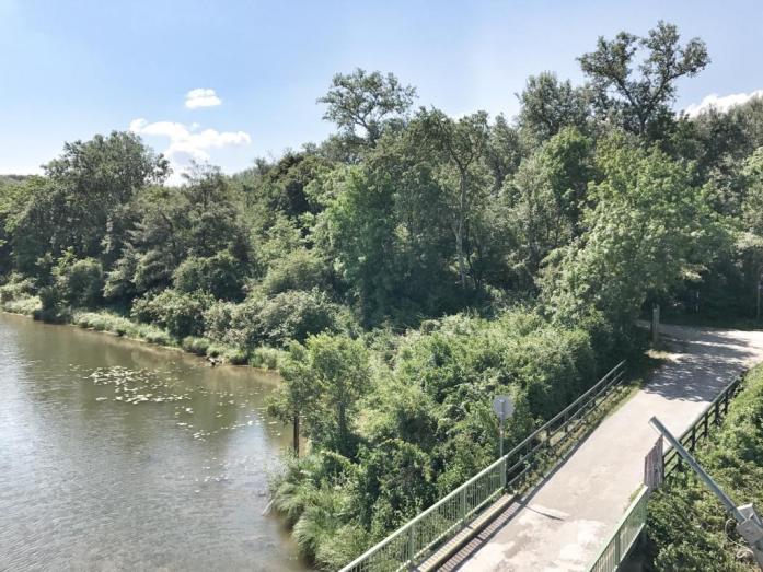 Familienausflug Nationalpark Donauauen. Familien Radausflug.
