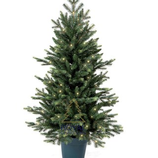 mini-pot-kunstkerstboom-iowa-pe-pvc-50-warm-led-lampjes-eu-stekker-105-centimeter