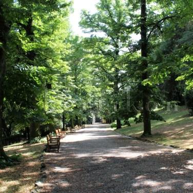 Firenze, Villa Stibbert: a tájképi park kerti sétányának kertépítészeti kialakítása