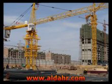 High Quality Construction Machinery Tower Crane Qtz63 TC5013