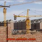 Lifting Hydraulic Topless Tower Crane Qtz63 PT5013