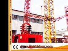 Popular Construction Lift Hoist Lift Crane Made In China