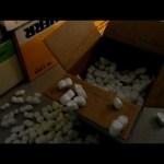 ycc parts unboxing