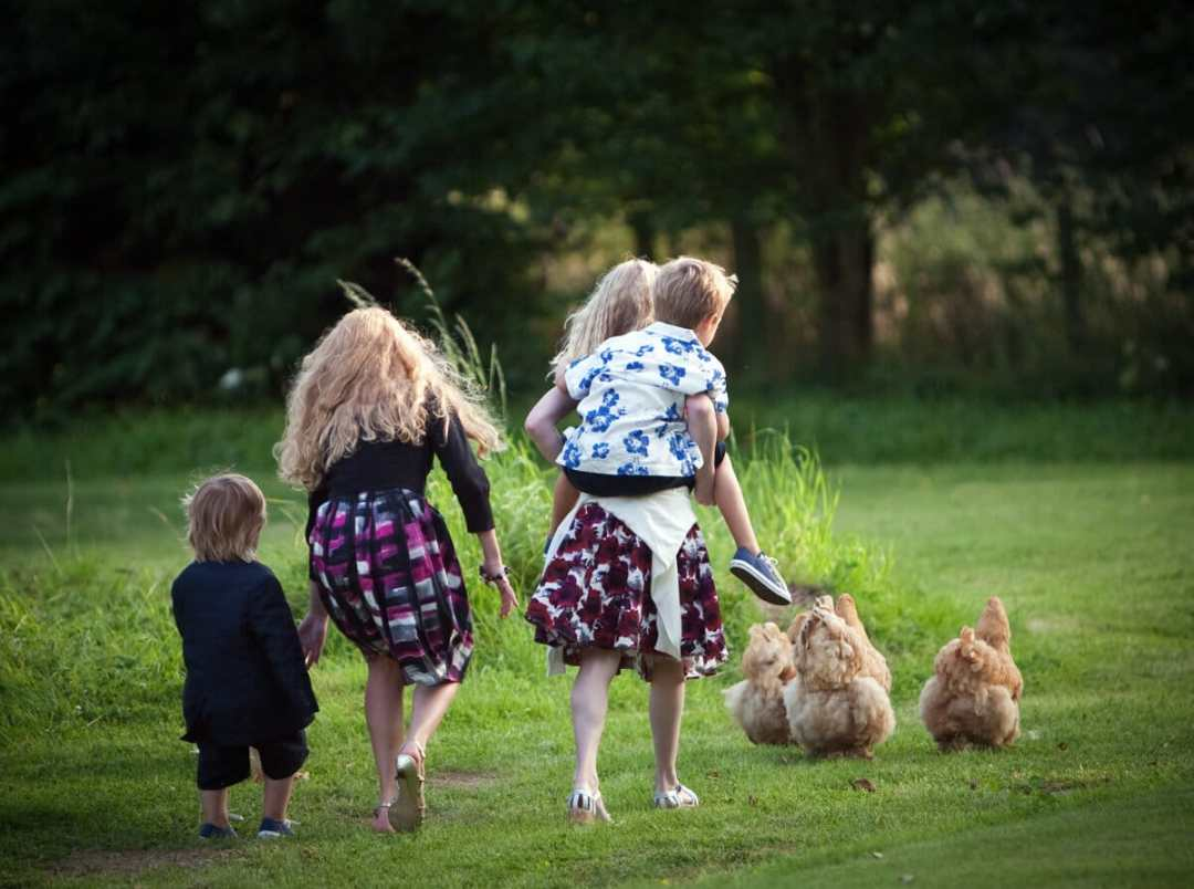 Kids playing with free range chickens at rural wedding