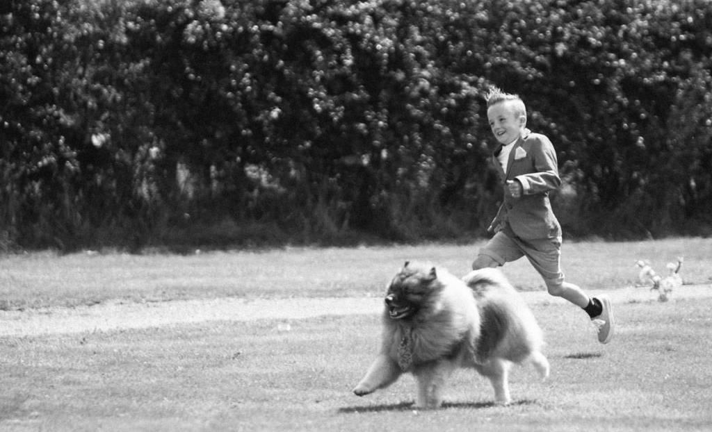 Boy running with dog at wedding in Shropshire