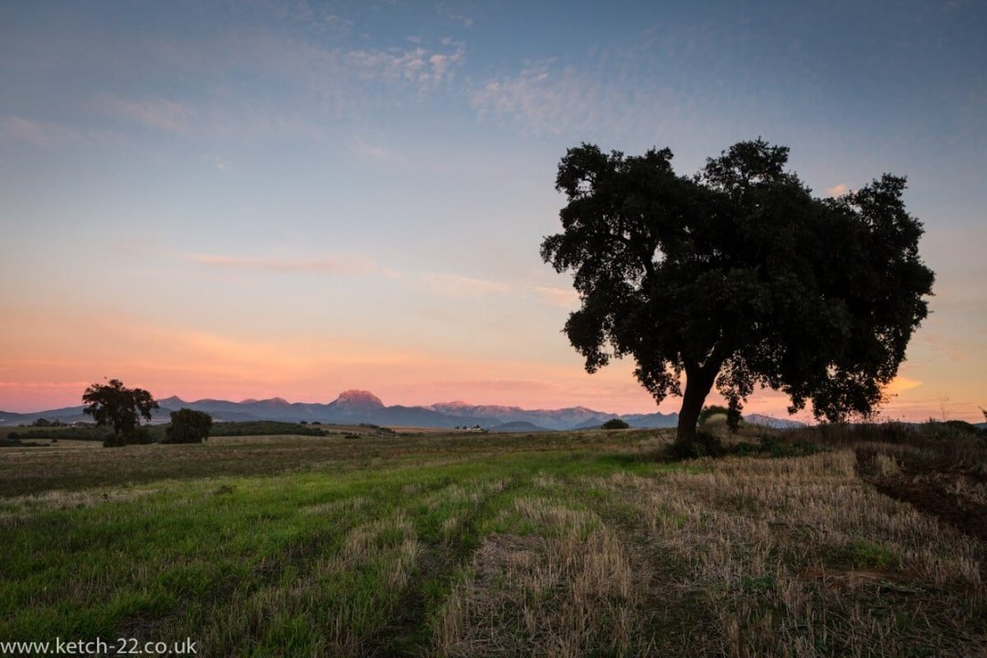 Sunset view over green fields and tree with mountains of Grazalema national Park in the back ground