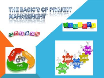 The Basic's of Project Management