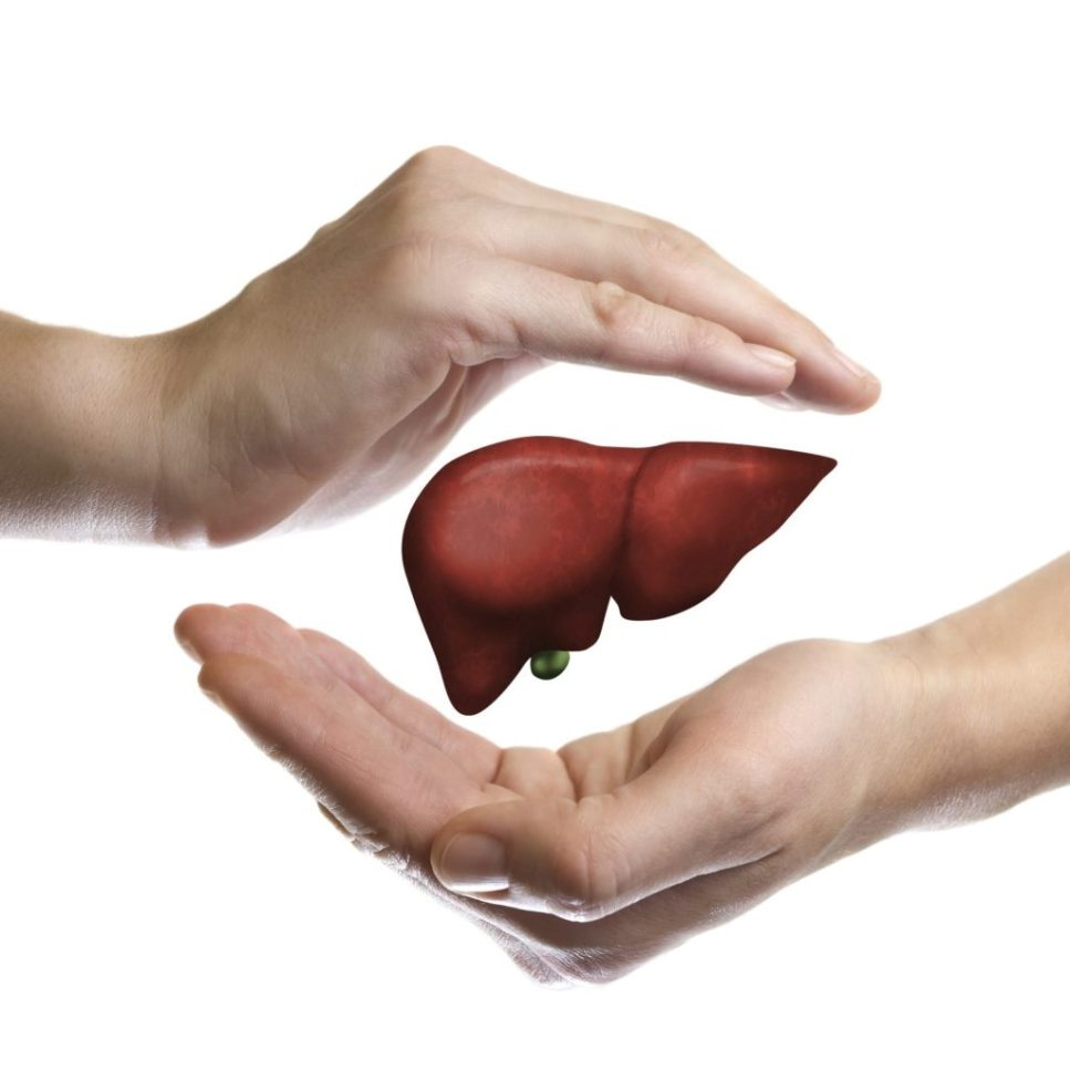 Why Care About the Liver | keto-vegan.com