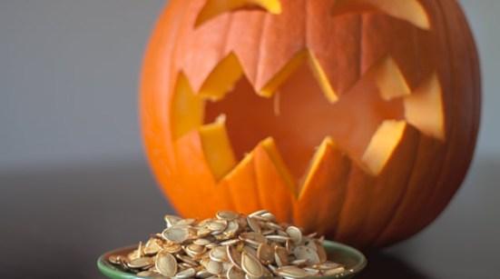 Pumpkin and Squash Seeds