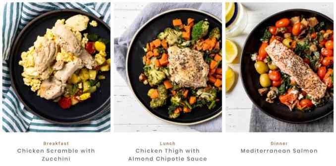 meal options from fresh n lean