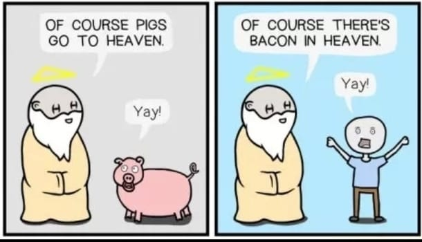 pigs and bacon in heaven funny graphic
