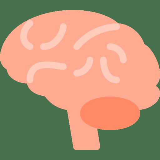 keto hersenwerking