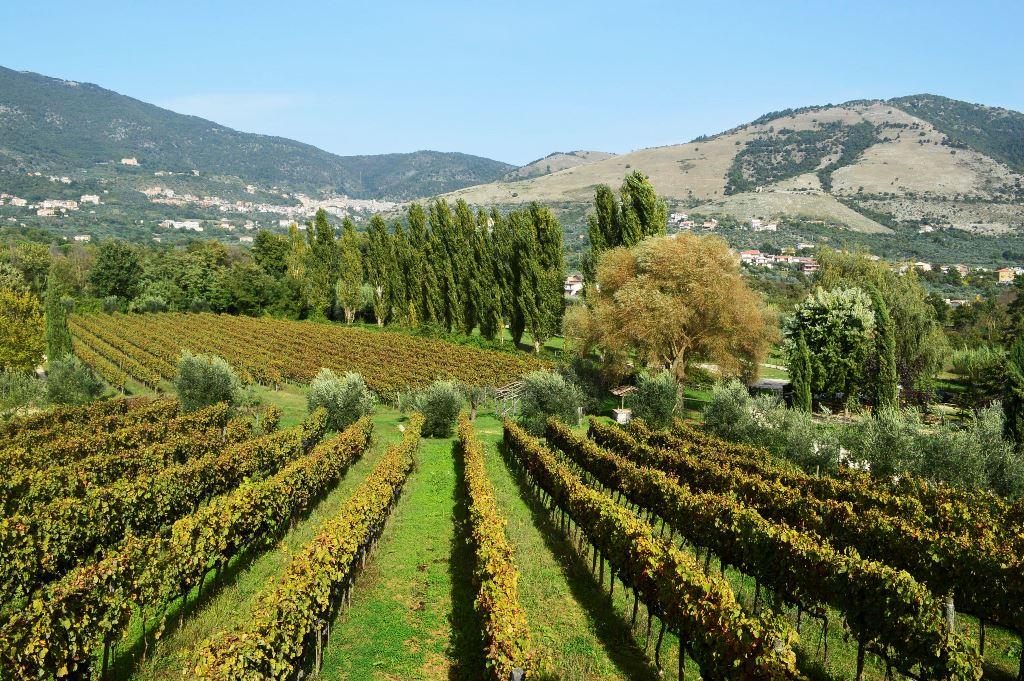 rota do vinho na Itália