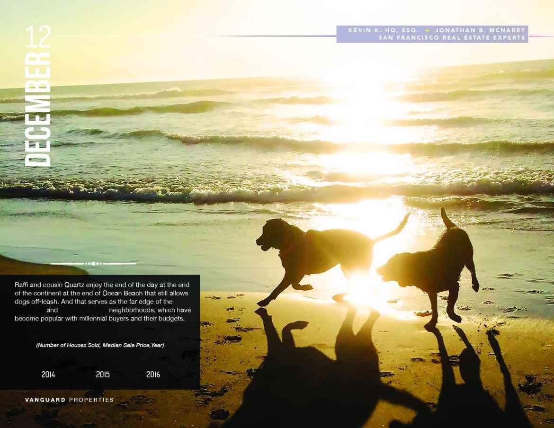 Raffi and Quartz run on Ocean Beach in the Setting Sun
