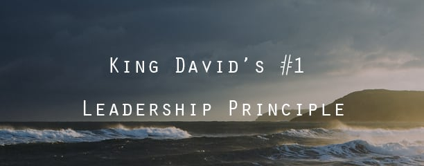 King David Leadership Principle