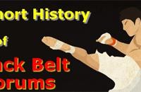 A Short History of Black Belt Forums