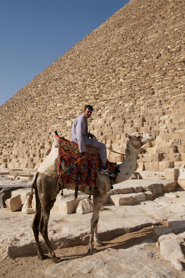 Ride a Camel in Egypt