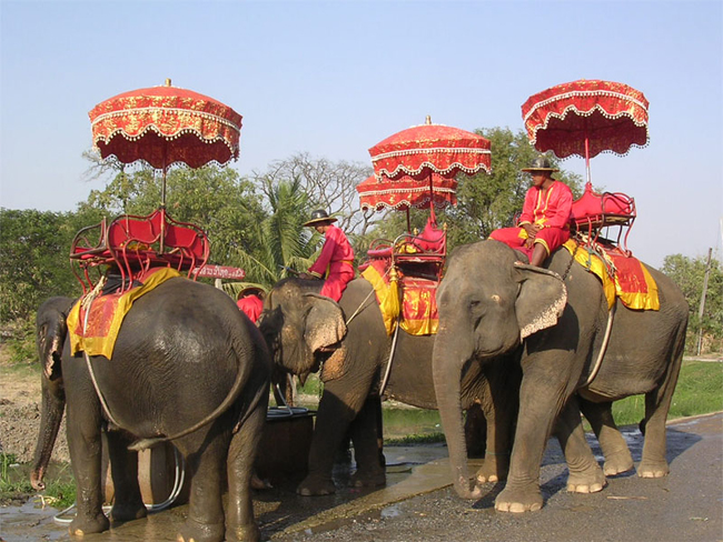 Ride an Elephant in Thailand