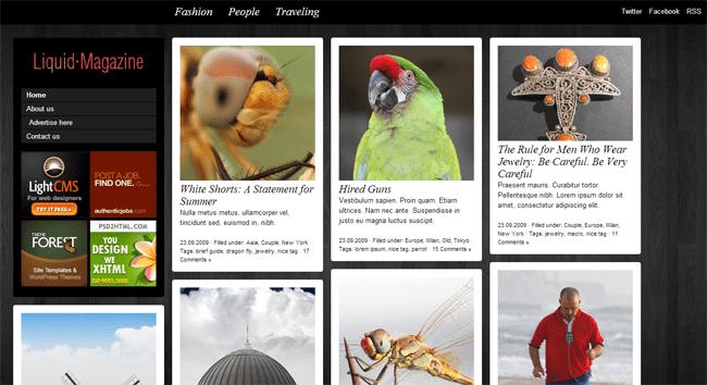 Liquid Magazine WordPress Theme