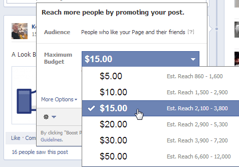 Facebook Set Maximum Budget