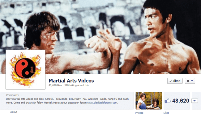 Martial Arts Videos on Facebook