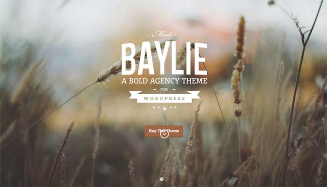 Baylie WordPress Theme