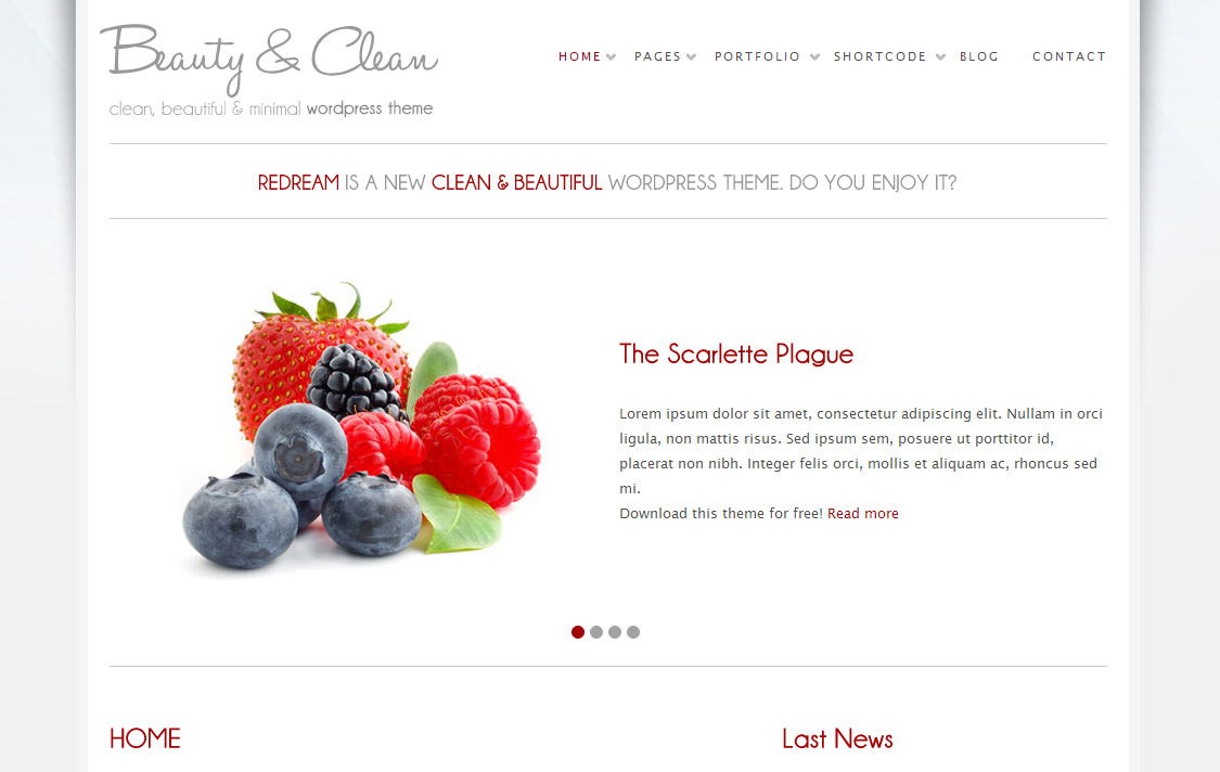 Beauty and Clean WordPress Theme